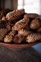 Pine cones in a brown dish
