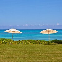 Two parasols between bright blue sea, lawns and tropical plants