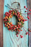Wreath made of assorted rose hips