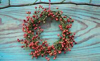 Wreath made of small rose hips