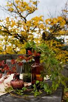 Autumnal tendrils of foliage in colourful glass bottles