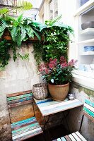Folding chairs and table with peeling paint on terrace next to kitchen window and plant pot on table