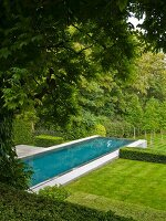 An infinity pool in a well-tended garden