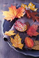 Autumn arrangement: plate of colourful, dried and painted autumn leaves
