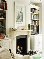 Artistic photo of budgerigar above open fireplace flanked by bookcases