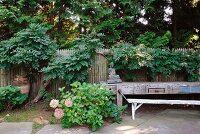 Flowering bushes in garden and rustic workbench against wooden fence