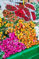Bouquets of ranunculus & tulips on flower market (Netherlands)