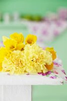 Daffodils and yellow carnations against green background