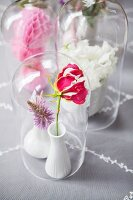 Flowers in white china vases under glass covers