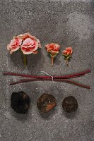 Pink begonia flowers, stems and tubers on stone slab