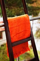 Orange blanket hung over ladder leaning against balustrade