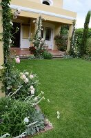 Clipped lawn adjoining house with climbing rose 'Eden' growing up veranda columns