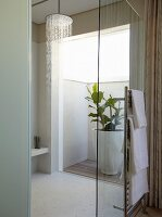 Walk-in shower with glass door; foliage plant in large planter on miniature patio