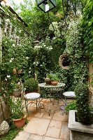 Vintage garden gazebo and climber-covered garden wall