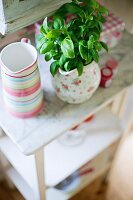 Basil in floral china jug on side table