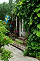 Climber-covered facade of summer house with wooden steps leading to garden and Swedish flag
