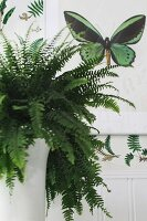 Fern in white porcelain vase in front of butterfly motif on wall