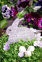 Felt Easter bunny decoration in pot of mind-your-own-business plant