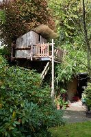 DIY tree house with porch and balcony amongst dense canopies; entrance to outbuilding in background