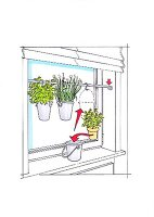 A rod in a window for hanging herbs