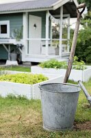 Zinc bucket and spade handle on lawn in front of raised bed of lettuce and garden shed