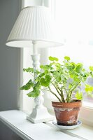 Potted geranium and white, vintage table lamp on windowsill