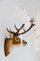 Hunting trophy on wall and Zettel'z lamp by Ingo Maurer