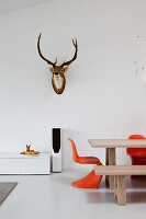 Dining table and orange classic chairs below hunting trophy on wall