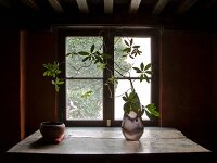 Sprigs of leaves in a glass vase on a rustic table in front of a window lit from behind