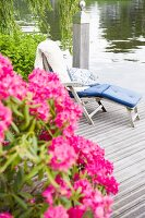 Pink flowering oleander on a wooden jetty with a comfortable wooden sun lounger with cushions by the water
