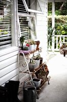 Various potted plants on rusty plant stand on terrace outside white-painted wooden house