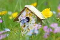 Bird nesting box painted with floral pattern amongst cranesbill, buttercups and forget-me-nots