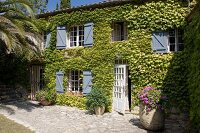 Sunny stone-paved terrace adjoining vine-covered guest house in converted former brickworks