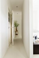Narrow white corridor leading to vase of leaves on plant stand; open doorway to one side