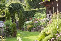 Flowering plants and conifers in idyllic garden with gate under hedge arch