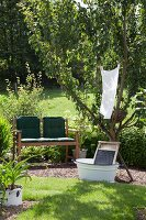 Wooden bench with cushions and washboard in vintage white enamel tub below laundry hung in tree in summer garden
