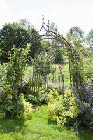 Row of trellis arches forming tunnel in summer garden