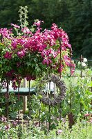 Woven wreath hung on metal fence next to pink-flowering clematis