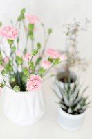 Vase of pin carnations