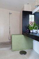 Dark washstand counter on green half-height wall screening shower area