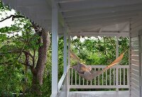 Hammock in evening sun on wooden veranda encircling beach house surrounded by trees & foliage plants