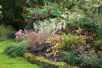 Various ornamental grasses in bed surrounded by low mossy wall in autumnal garden