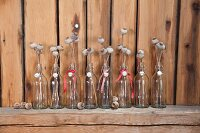 Dried poppy seed heads in small swing-top bottles on wooden shelf