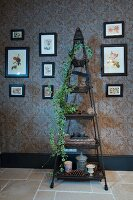 Ornaments and potted ivy on pyramid shelving flanked by pictures on patterned wallpaper
