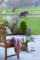 Blanket on wooden bench and potted plant on terrace with view of horse paddock