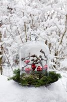 Red baubles hanging from branch under glass cover on pewter plate decorated with spruce twigs in winter landscape