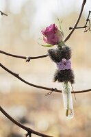 Rose in decorated test tube hung from twig