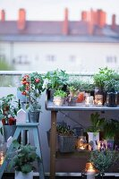 Potting bench and stepladder on roof terrace decorated with plants and candle lanterns