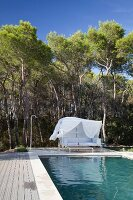 Pool and elegant white couch with white canopy as windbreak in front of pine woods