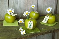 Green apples decorated with ox-eye daisies and name tags on felt coasters